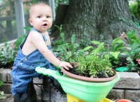 gradinarit 200x146 Copilul la 1 an si 11 luni