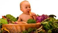 bebe vegetarian 200x116 Suplimentele de fier la copii (alaptati, hraniti cu lapte formula sau vegetarieni)