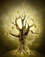 pomul 159x200 Pomul cu merele de aur